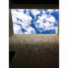 patio de luz: Jardines de invierno de estilo  por modulo cinco arquitectura
