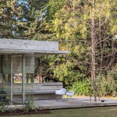 Pabellón Casa Torcuato: Jardines de invierno de estilo  por Besonías Almeida arquitectos