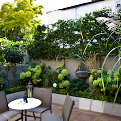 Privacy in a small London Garden:  Garden by GreenlinesDesign Ltd