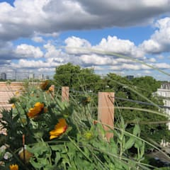Penthouse Terrace, St. Stephens Gardens, London:  Terrace by GreenlinesDesign Ltd