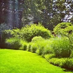 Gräsergarten: minimalistischer Garten von grasgrau - GARTENDESIGN