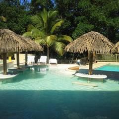 Casas de estilo  de palma y madera.com
