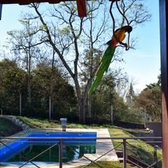 Vivienda en San Salvador de Jujuy: Piletas de estilo  por Carlos Iriarte arquitectura