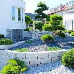 Gartengestaltung im Bauhausstil: moderner Garten von Bodin Pflanzliche Raumgestaltung GmbH
