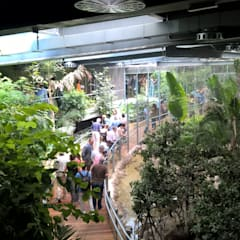 Tropical style museums by GreenerLand. Arquitectura Paisajista y Tematización Tropical