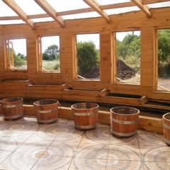Casa Sol en Rari: Jardines de invierno de estilo  por Secrea