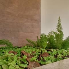 Casa Tropical : Jardins  por Eneida Lima Paisagismo