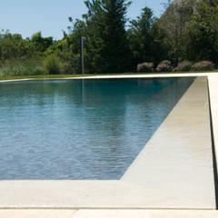 Dune House: modern Pool by SA-DA Architecture