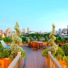 West Village NYC Rooftop Garden:  Garden by Amber Freda Home & Garden