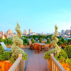 West Village NYC Rooftop Garden: eclectic Garden by Amber Freda Home & Garden