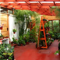Jardines de estilo  por Vortice Design Ltda,