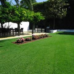 Jardim - Guimarães: Jardins  por TERRA JARDIM