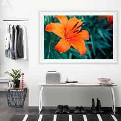 Wallprint Tropical Lily: modern  von K&L Wall Art,Modern Papier