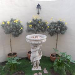 French House:  Garden by SOJE Interior, Design and Decor PTY (Ltd), Mediterranean