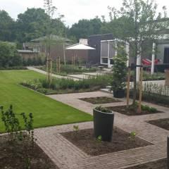 Tuinen: moderne Tuin door GroenerGras Hoveniers