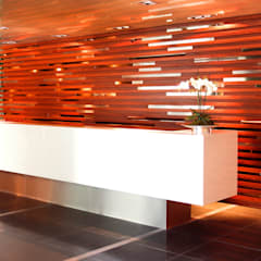 Fiery Reception Area:  Commercial Spaces by Gracious Luxury Interiors