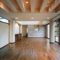 ダイニングよりリビングを見る: 豊田空間デザイン室 一級建築士事務所が手掛けたリビングです。