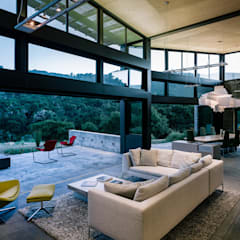 Butterfly House:  Living room by Feldman Architecture, Modern