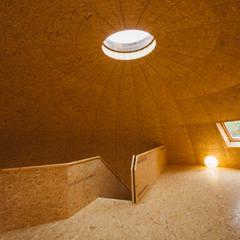 Instituto de Horticultura y Jardineria Reus : Salas multimedia de estilo rural de CHAPEAU VERT