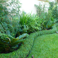 PRIVATE RESIDENCE - PANAMA CITY:  Garden by TARTE LANDSCAPES, Tropical