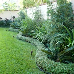 PRIVATE RESIDENCE - PANAMA CITY: tropical Garden by TARTE LANDSCAPES