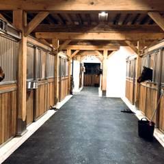 Haras du Pachavert: Espaces commerciaux de style  par Horse Stop