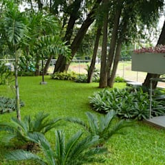 LUXOR TOWERS - PANAMA CITY:  Garden by TARTE LANDSCAPES, Tropical