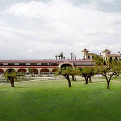 Hípica Yeguada Gloria: Jardines de estilo  de Vidal Molina Arquitectos