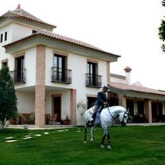 Hípica Yeguada Gloria: Terrazas de estilo  de Vidal Molina Arquitectos