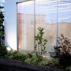 エントランスの風景: こういくやが手掛けた庭です。