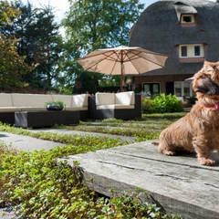 Tien jaar oude terrassentuin:  Terras door Jaap Sterk Hoveniers