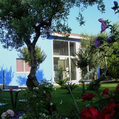 Bed & Breakfast Jacaranda:  Hotels door MEF Architect
