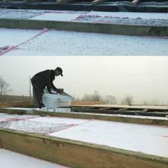 Prace budowlane zzewnątrz (termoizolacja dachu): styl , w kategorii Ściany zaprojektowany przez BOXlife Sp. z o.o.