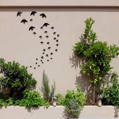 بالکن،ایوان وتراس by STILL urban design