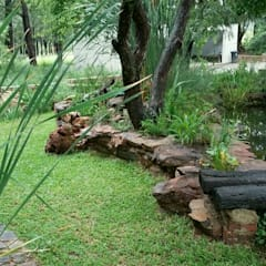Large Country garden:  Garden by Young Landscape Design Studio,