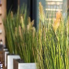 Schick und unverwüstlich: textile #Gräser:  Bars & Clubs von BAUMHAUS GmbH   Raumbegrünung Pflanzenpflege