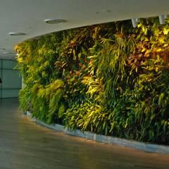 VERTICAL GARDEN: Gedung perkantoran oleh NISCALA GARDEN | Tukang Taman Surabaya, Modern