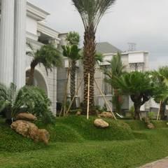 TAMAN TROPIS MODERN: Taman oleh NISCALA GARDEN | Tukang Taman Surabaya, Mediteran