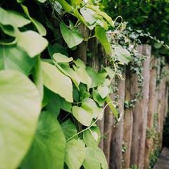 Kastanjehouten palen als afscheiding:  Tuin door Buro Buitenom exterieurontwerpers