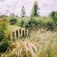 Kastanjehouten palen: landelijke Tuin door Buro Buitenom exterieurontwerpers