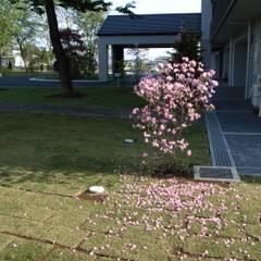 Estanques de jardín de estilo  por 株式会社小木野貴光アトリエ 級建築士事務所