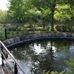 Mares et étangs de style  par 株式会社小木野貴光アトリエ 級建築士事務所