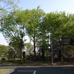 Hospitales de estilo  por 株式会社小木野貴光アトリエ 級建築士事務所