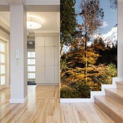 Glasbild für gaaanz hohe Räume... :  Flur & Diele von Mitko Design
