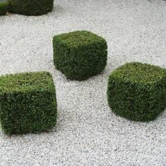 Jardins de Formas: Espaços comerciais  por ECOSSISTEMAS; Áreas Verdes e Sistemas de Rega.