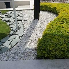 SALA DE VENTAS - MADEIRA APTOS. - BARRANQUILLA - COLOMBIA: Jardines de estilo  por BRASSICA SOLUCIONES PAISAJISTICAS S.A.S.