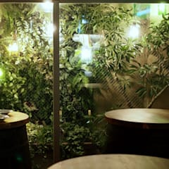 Bars & clubs by Garden & Landscape Design 風姿花伝