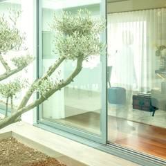 Moradia Granja | 2017 Jardins de Inverno modernos por Susana Camelo Moderno