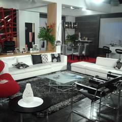 EMPRESA DE DISEÑO ARQUITECTÓNICO Y ESCENOGRAFICO : Salas / recibidores de estilo  por ERGOARQUITECTURAS FL C.A., Moderno Vidrio