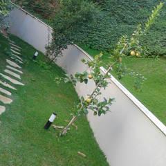 حديقة تنفيذ Gabriela Pacheco | Arquitetura+Design+Paisagismo